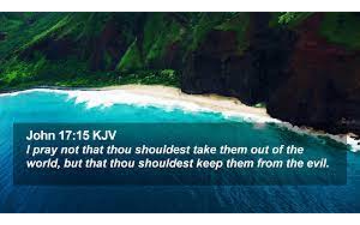 """""""I pray not that thou shouldest take them out of the world, but that thou shouldest keep them f"""